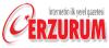 Erzurum Gazetesi son dakika