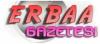 Erbaa Gazetesi  son dakika