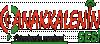 Çanakkale'nin Sesi son dakika