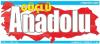 Güçlü Anadolu Gazetesi son dakika